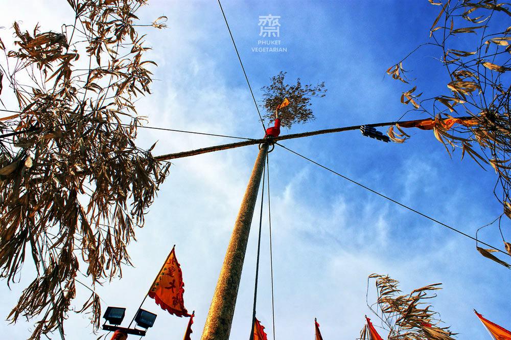 Go Teng poles