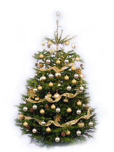 You will see Christmas trees and staff wearing festive hats and the like, which is great as it really helps remind you it is Christmas in the absence of the cold!