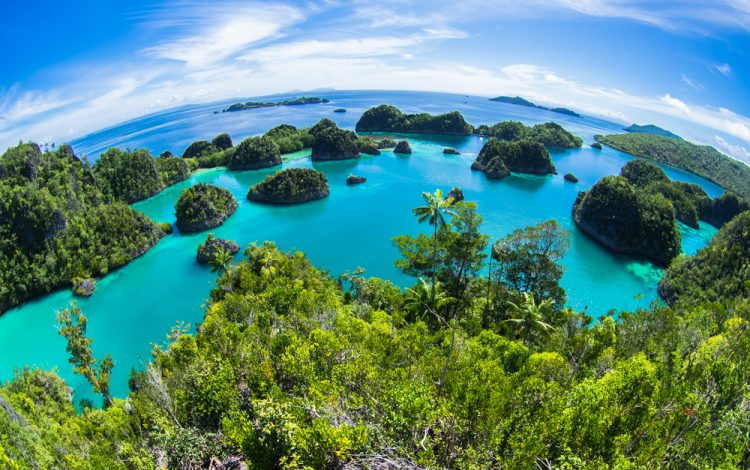Batanme indonesia