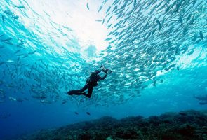 The 10 best diving spots in Asia