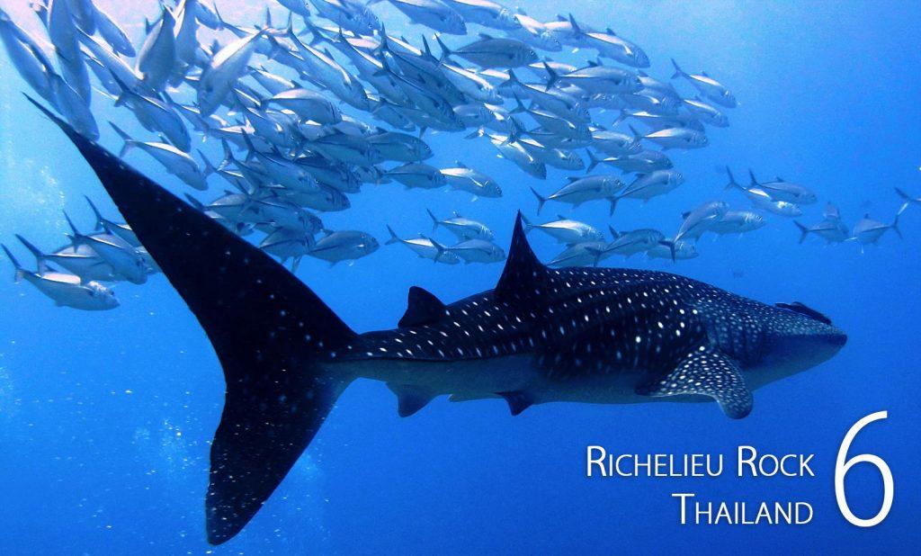 Richelieu Rock, Thailand