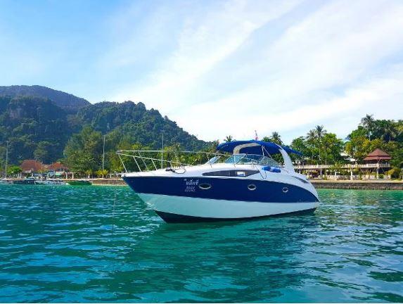 Simpson Marine - Bayliner 325